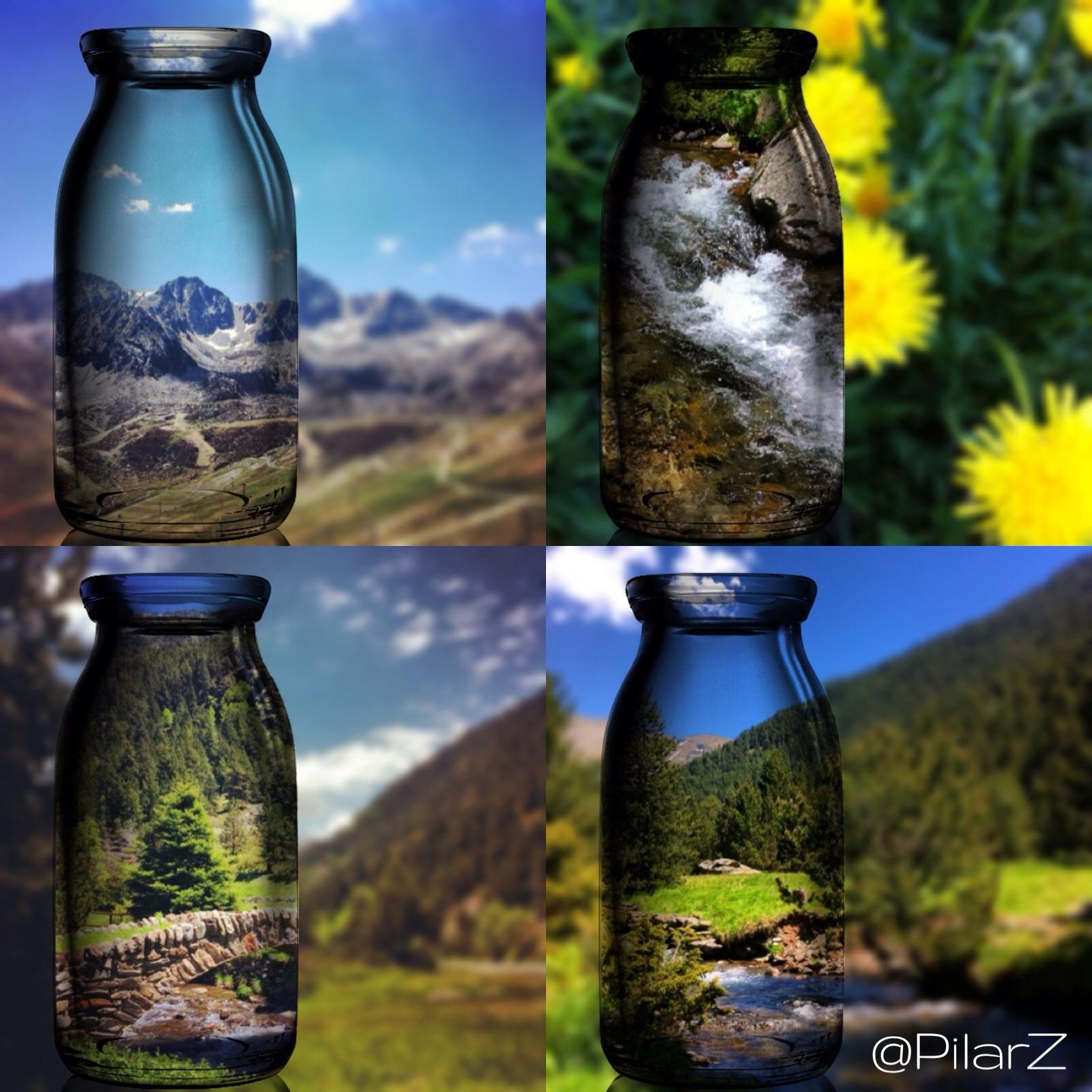 El país dels Pirineus. Vine i tasta'l